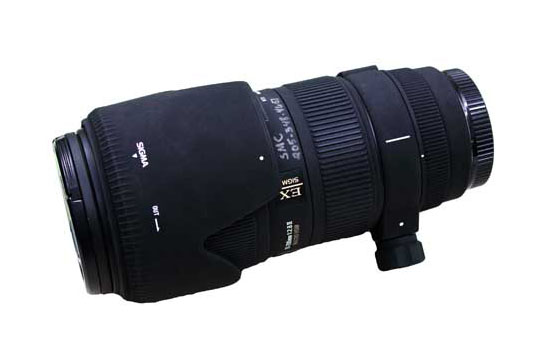 SIGMA APO DG 200mm Macro lens, training required